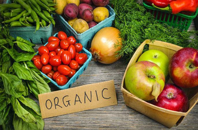 Làm sao để canh tác nông nghiệp hữu cơ?